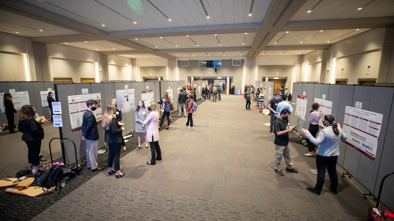 Undergraduate Research on Display at 2021 URCA